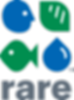 Rare Logo 1 (002).png