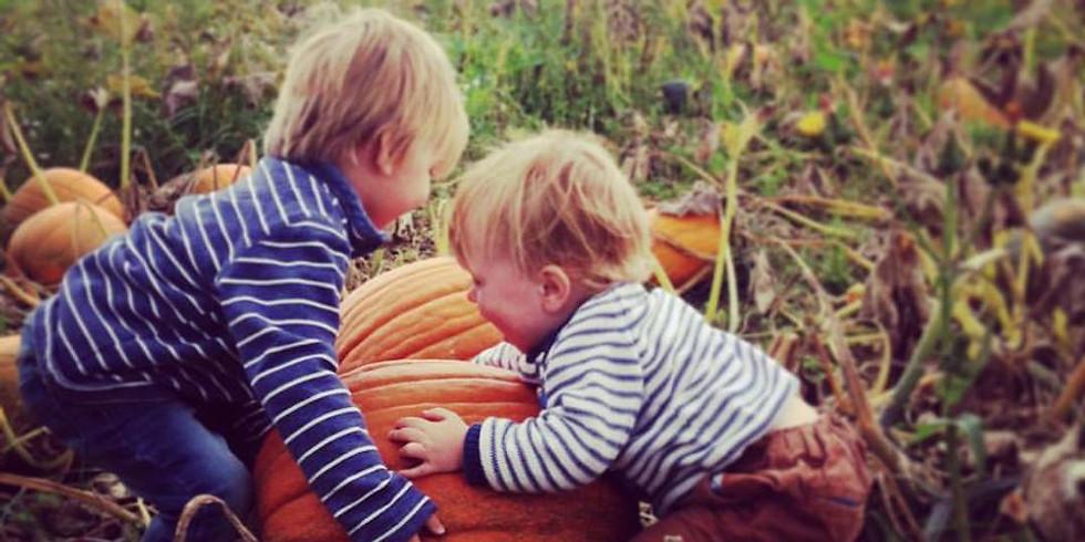 Pumpkin Planting!