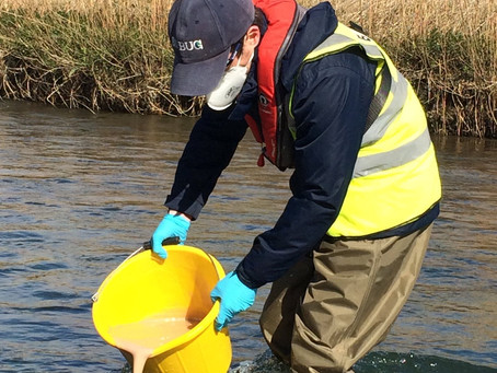 Critical Blandford fly control continues