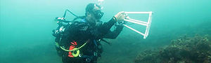 Diver_400x120px.jpg