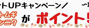 【楽天/Yahoo】ポイントUPキャンペーン