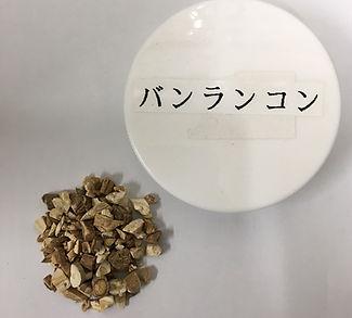バンランコン2.JPG