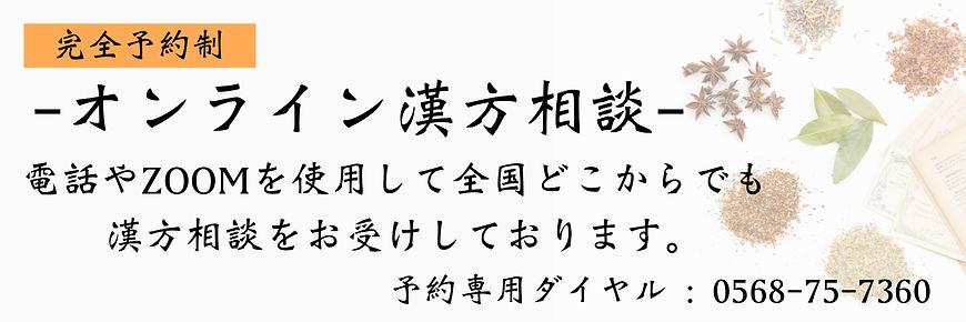オンライン漢方相談.JPG
