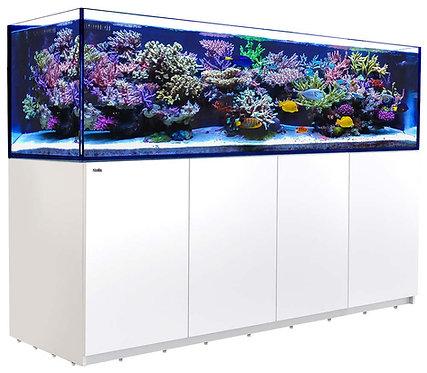 Reefer 3XL 900