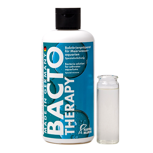 Bacto Therapy