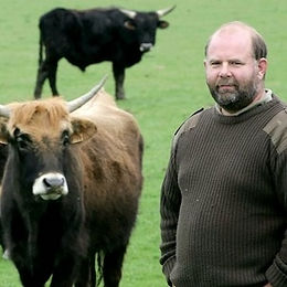 Nazi-bred cows too aggressive, Will Jone