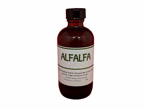 Alfalfa Tincture