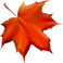 fall-leaf-5293499_1920.png