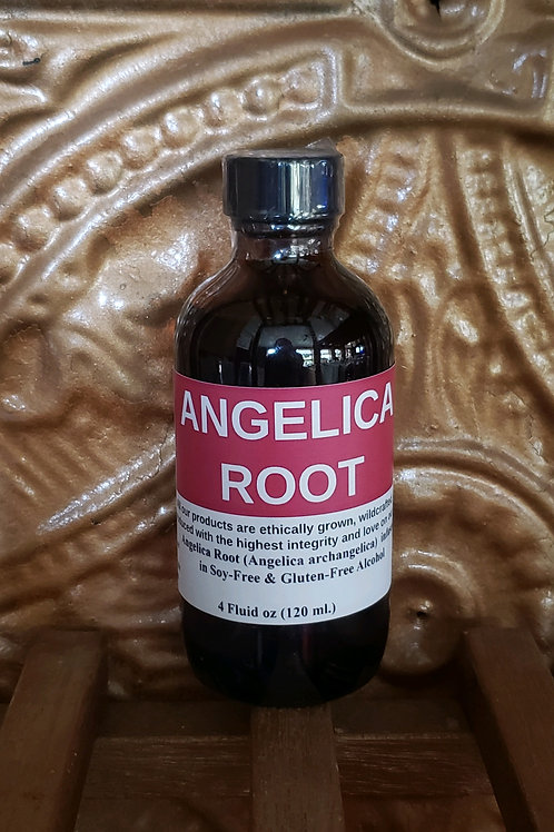 Angelica Root Tincture