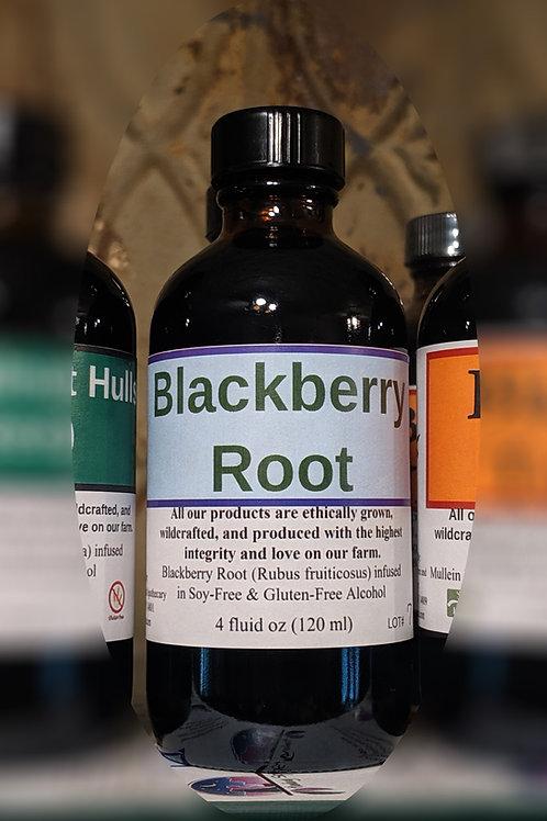 Blackberry Root Tincture
