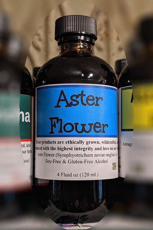 Aster Flower Tincture