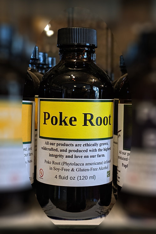 Poke Root Tincture