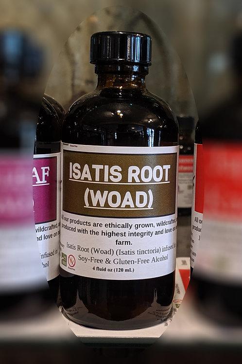 Isatis Root (Woad) Tincture