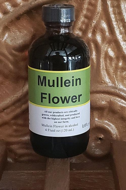 Mullein Flower Tincture