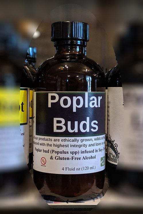 Poplar Bud Tincture