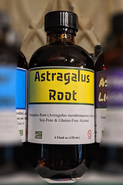 Astragalus Root Tincture