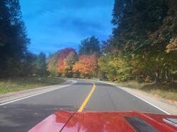 fall pic 1