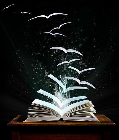 open book with birds.jpg