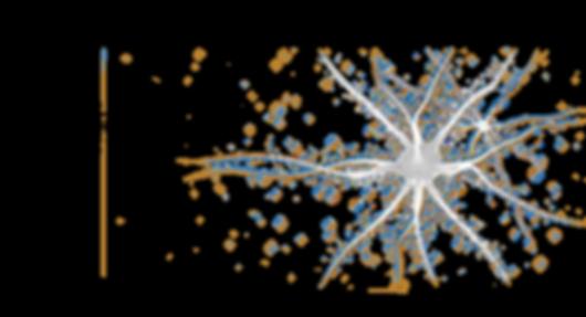 neuron.png