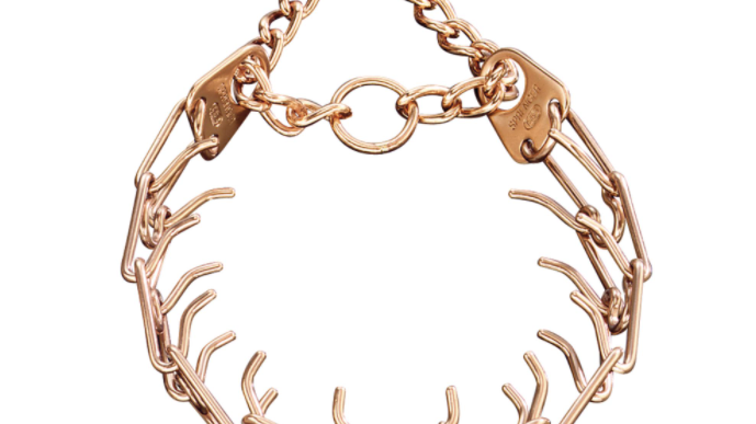Martingale Prong Collar