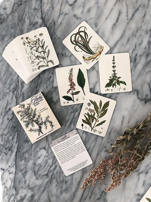 Herbs and Medicinal Plants Knowledge Card Deck