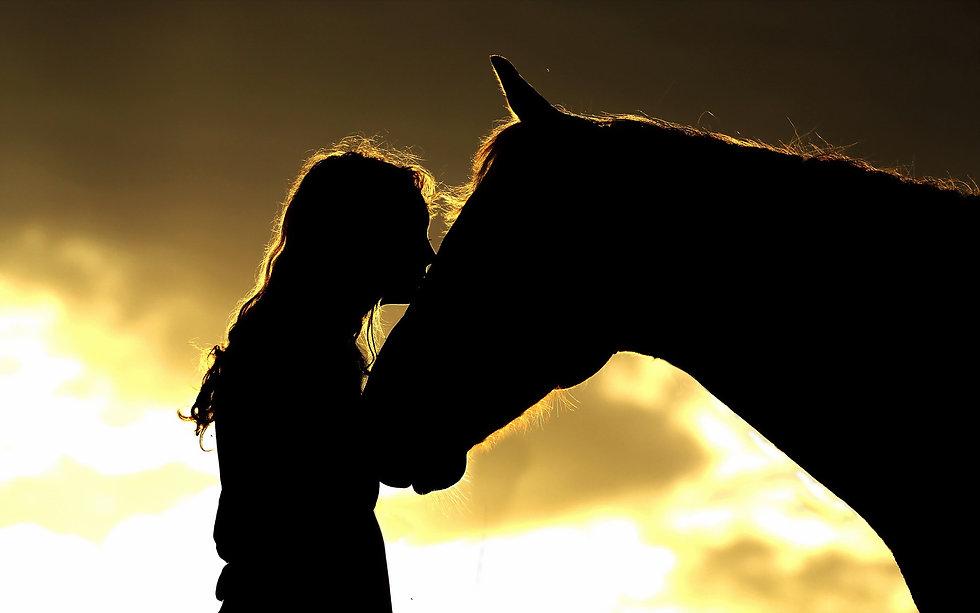 loving my horse.jpg