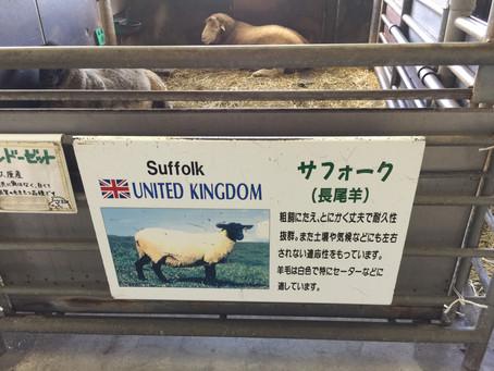 北海道士別市での写真