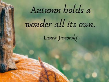 Autumn Wonder ♥