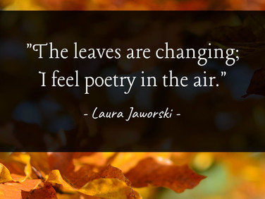 The Leaves Are Changing 🍂