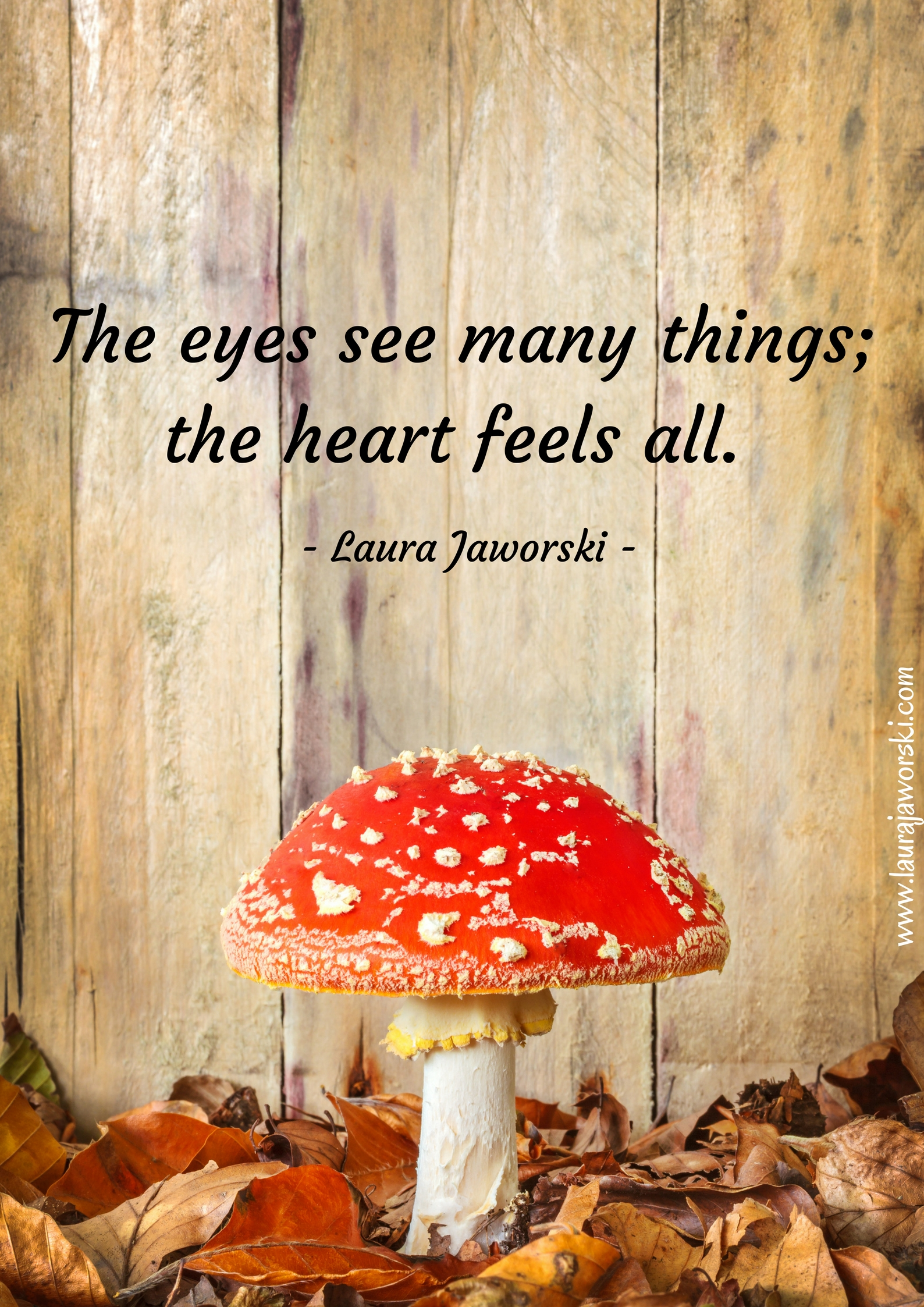 The Heart | www.laurajaworski.com