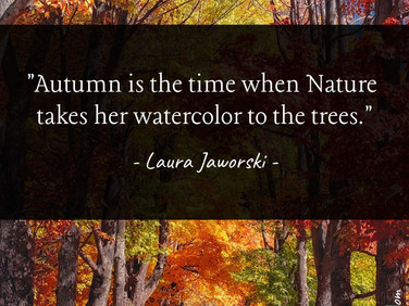 Nature's Watercolor 🍂
