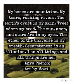 by Anya Phenix