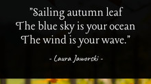Sailing Autumn Leaf 🍂
