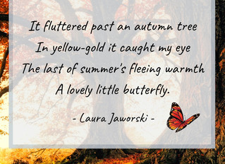 Autumn Butterfly ♥
