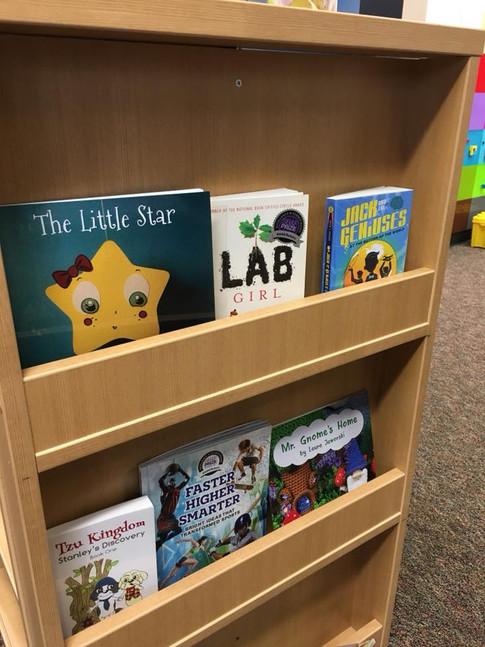 The Little Star & Mr. Gnome's Home