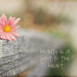 Beauty | www.laurajaworski.com
