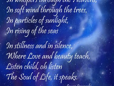 Soul of Life 💖