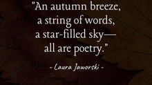 Nature's Poetry 🍂
