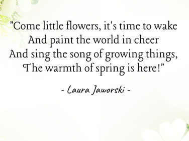 The Warmth of Spring by Laura Jaworski (@bugburrypond) 🌻
