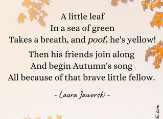 A Little Leaf 🍂