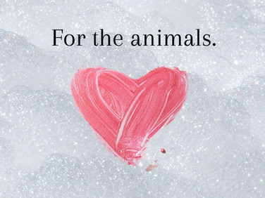 For the Animals 💕