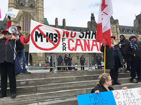 Barbara Kay: Liberals left reeling by clear, rational criticisms of M-103
