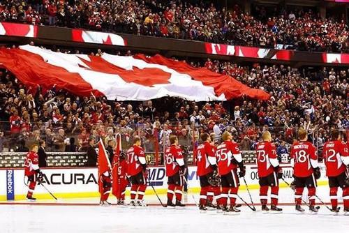 hockey and flag