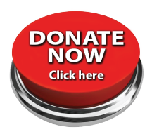 new-donate-now-216.png