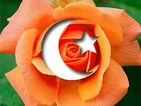 Islamophobia: A Rose By Any Other Name?