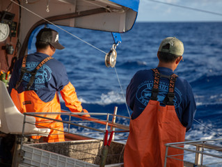 Sustainability & Hawaiian Fresh Seafood