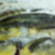 Fresh open ocean species mahimahi, ono, wahoo, opah, monchong overnight delivery