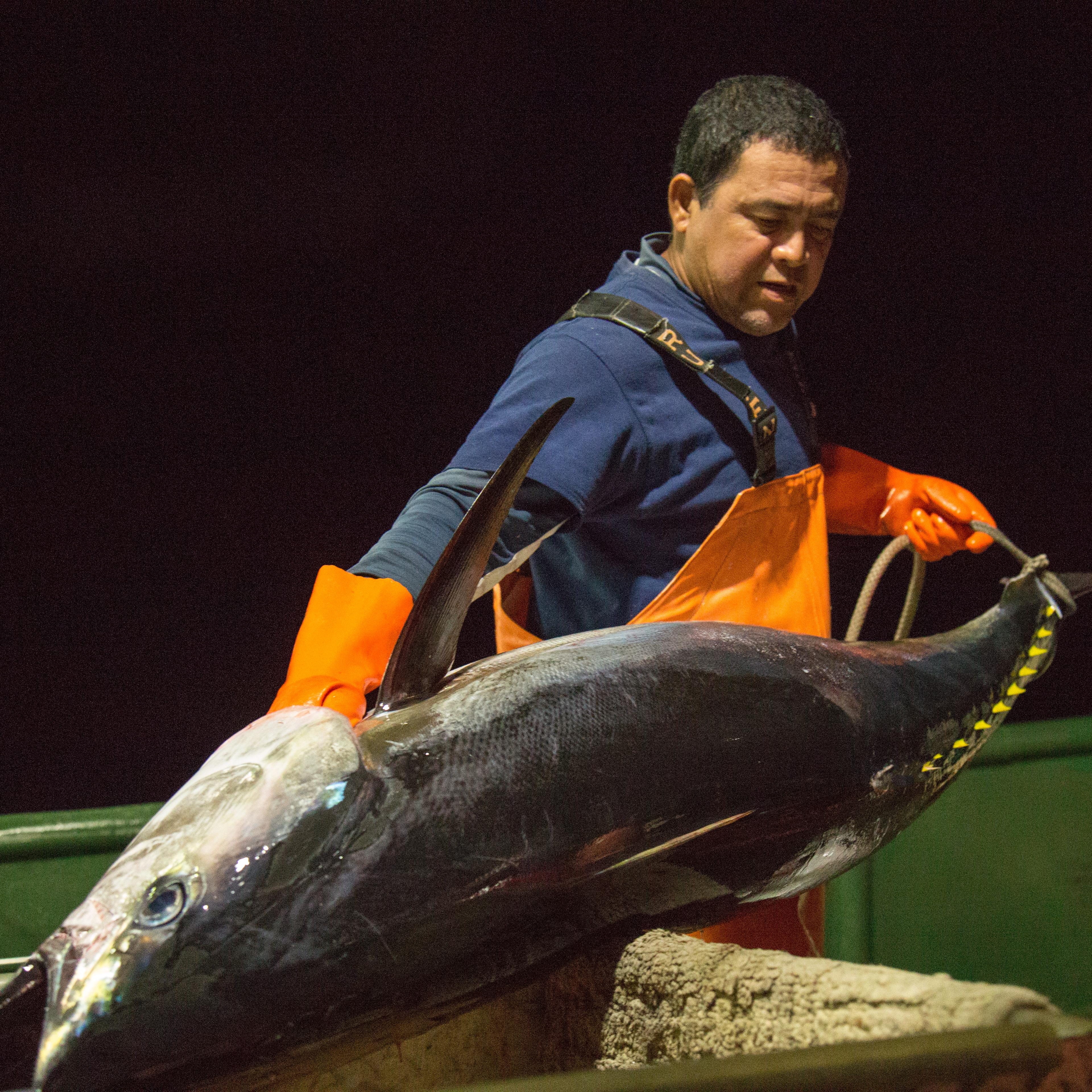 Fresh Hawaiian Ahi Tuna