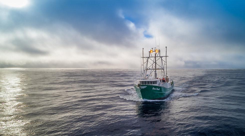 sea hunt aerial port side.jpg
