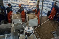 Hawaii Longline Fishing